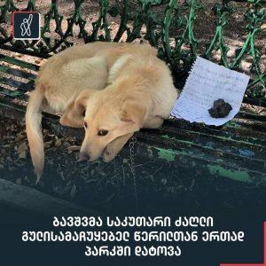 ბავშვმა საკუთარი ძაღლი გულისამაჩუყებელ წერილთან ერთად პარკში დატოვა